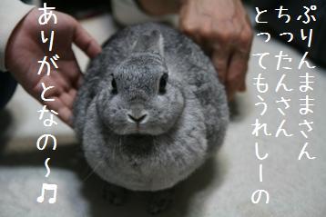 20081026_5.jpg