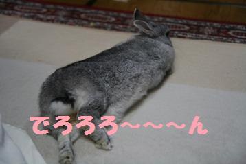 20081026_6.jpg