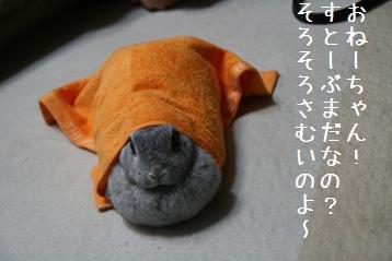20081028_5.jpg