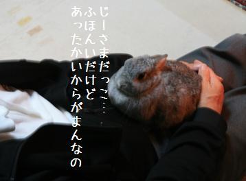 20081109_1.jpg