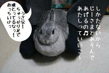 20081113_3.jpg