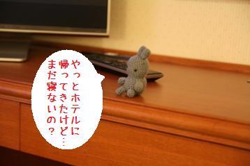 20081118_15.jpg
