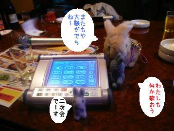 20081118_5.jpg