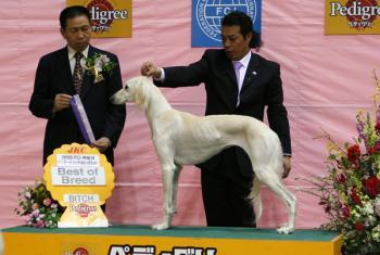 20090208yokohamaFCI ariel