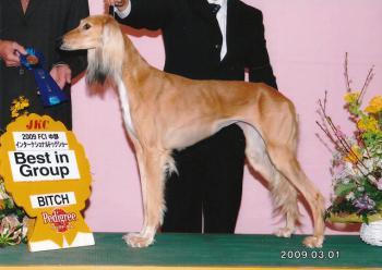 award_Latifa01.jpg