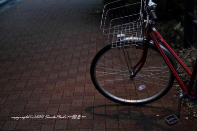 IMG_0887加工済み
