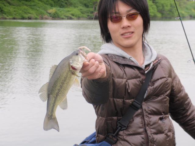 yoshi-bass1