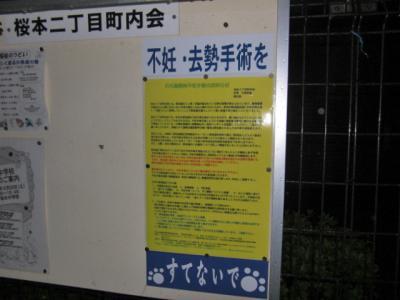 kokuti1_convert_20081015032230.jpg