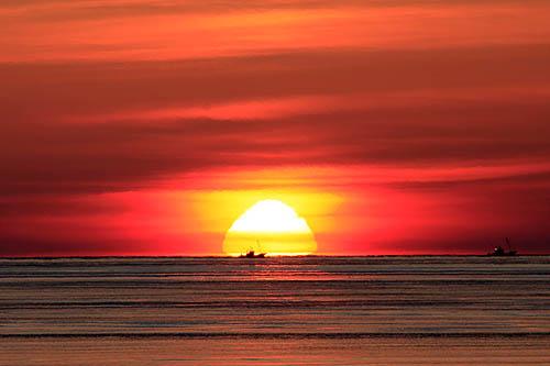 おむすび型の太陽