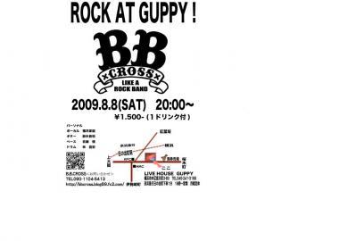 2009.8.8 グッピー