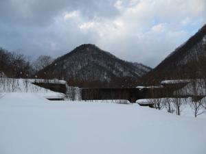 s2011-02-04_4045.jpg