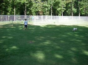 Ronald Reagan Park のdog run