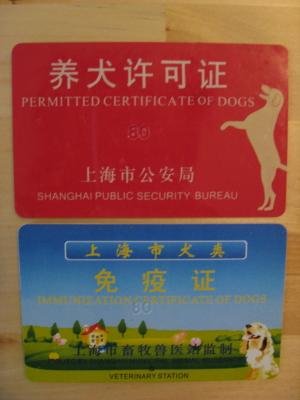 08 養犬許可証