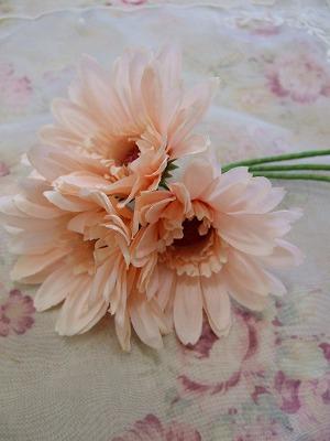 2008_0402nayupeko0004.jpg