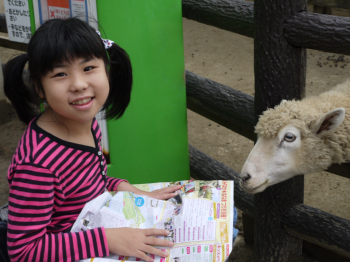 りーちゃんと羊