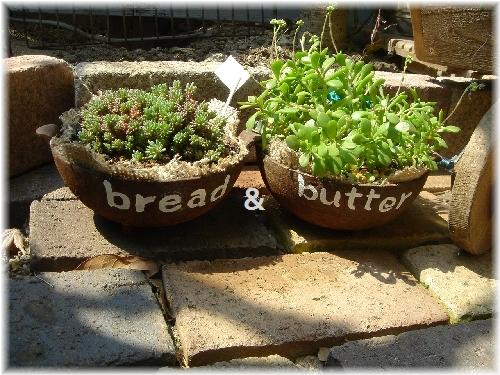 bread butterDSC00714