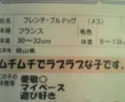 muchimuchi.jpg
