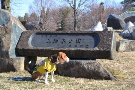 20120326上柚木公園03