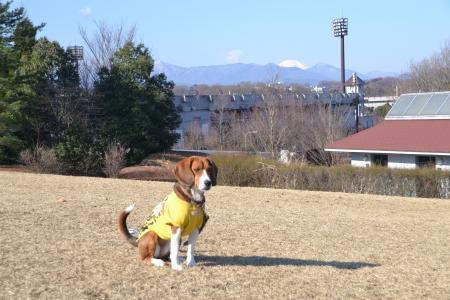 20120326上柚木公園10