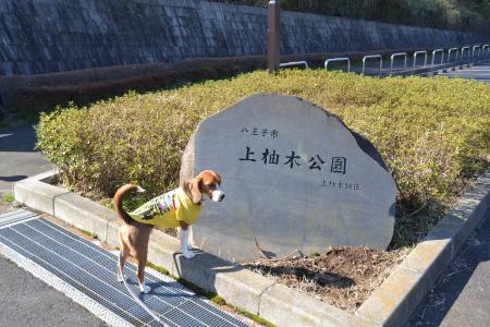 20120326上柚木公園20