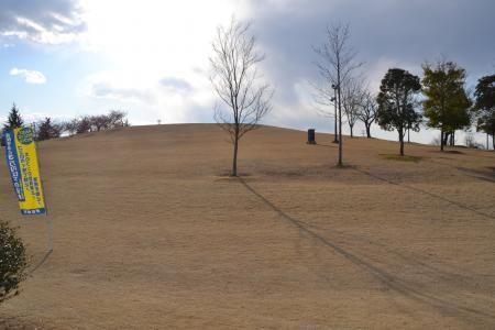 20120326伊勢崎15