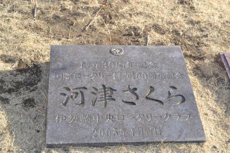 20120326伊勢崎19