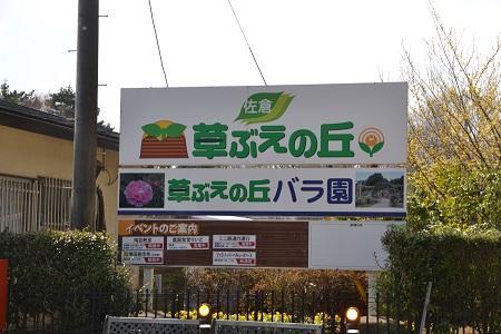 20120406佐倉市民の森05