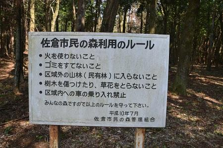 20120406佐倉市民の森01