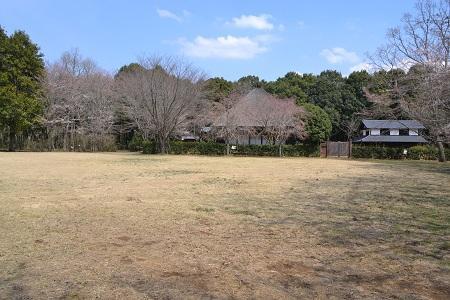 20120406佐倉市民の森09