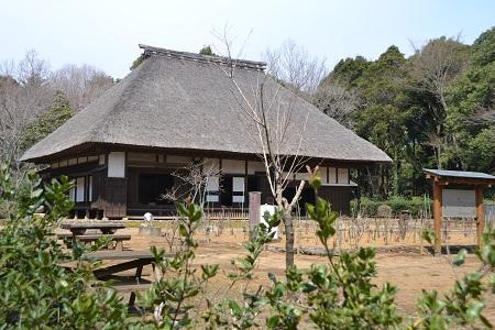 20120406佐倉市民の森08