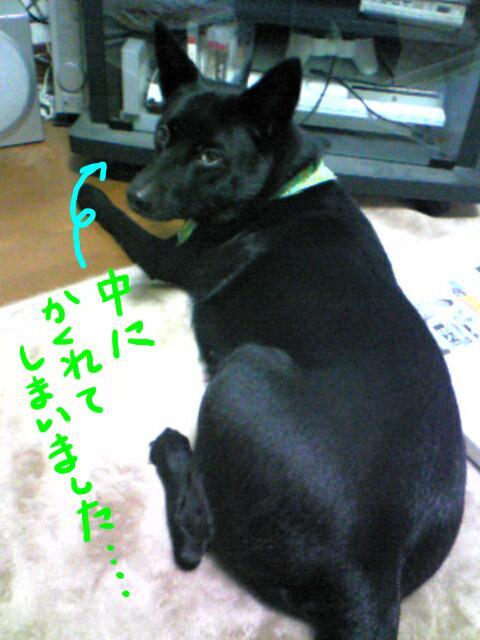 furimuki2.jpg