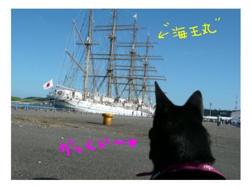 kaioumaru1_convert_20090727231758.jpg