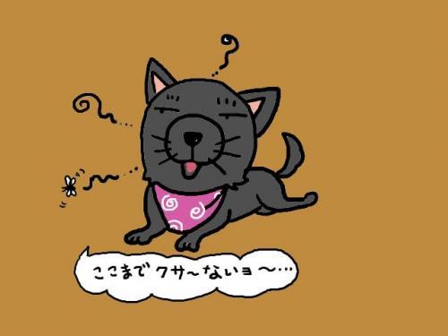 kusaina_convert_20090614221709.jpg