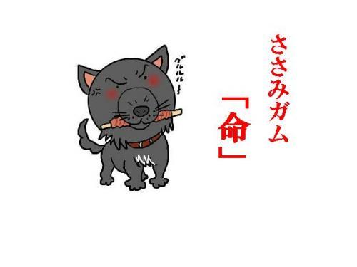 sasamigamu-1.jpg