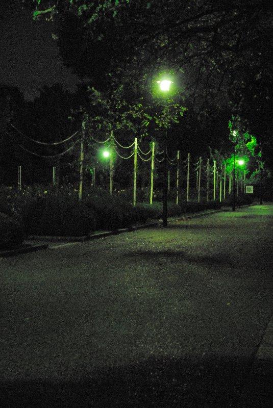 20081118-257667.jpg