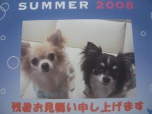 2_20080825135207.jpg