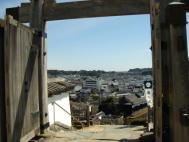 掛川城から市内を