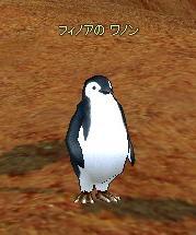 mabinogi_2008_08_07_030.jpg