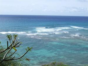hawaii2009 055 (Small)
