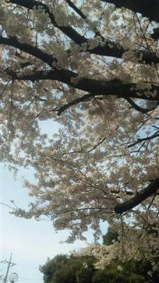 4月7日 (2) (Small)