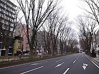 R0027989b.jpg