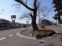 R0028812b.jpg
