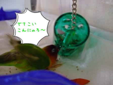 006_20120302113129.jpg