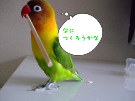 009_20120316185230.jpg