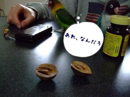 013_20120321124537.jpg