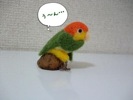 考える鳥3
