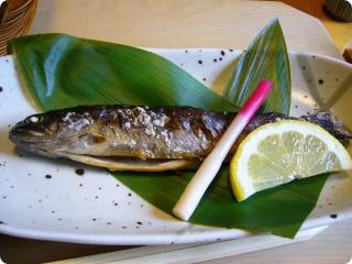 とき川 岩魚