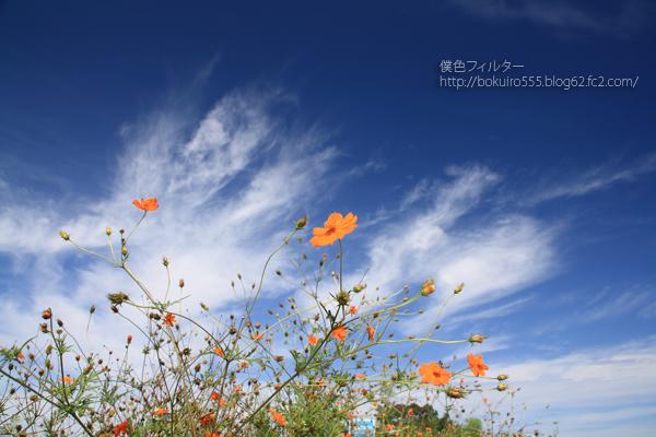 7754blog_10.jpg