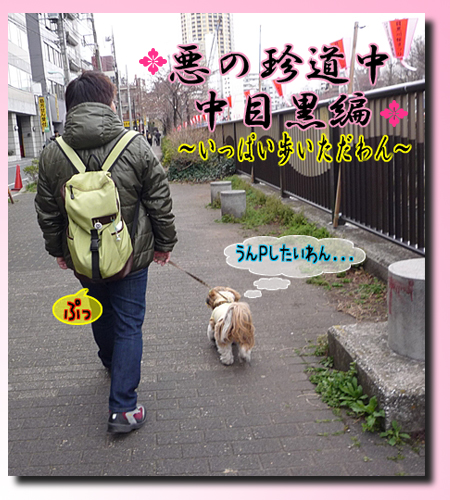 09_00328_02.jpg