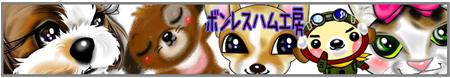 09_0223_01.jpg